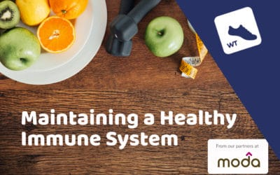 Maintaining a Healthy Immune System